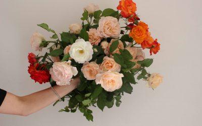 Il linguaggio dei fiori: a ciascun fiore il suo significato!